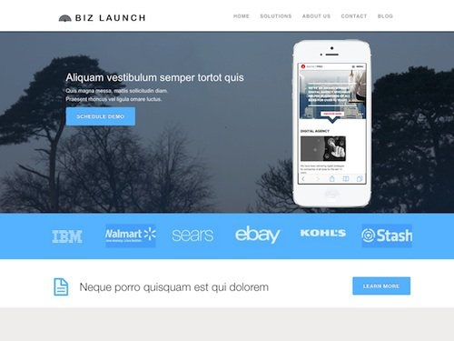 business-launcher-pro-wordpress